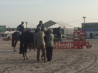 Horse Times Egypt: Equestrian Magazine :Riders Blog :The Perils Of Show Jumping Sport - 15