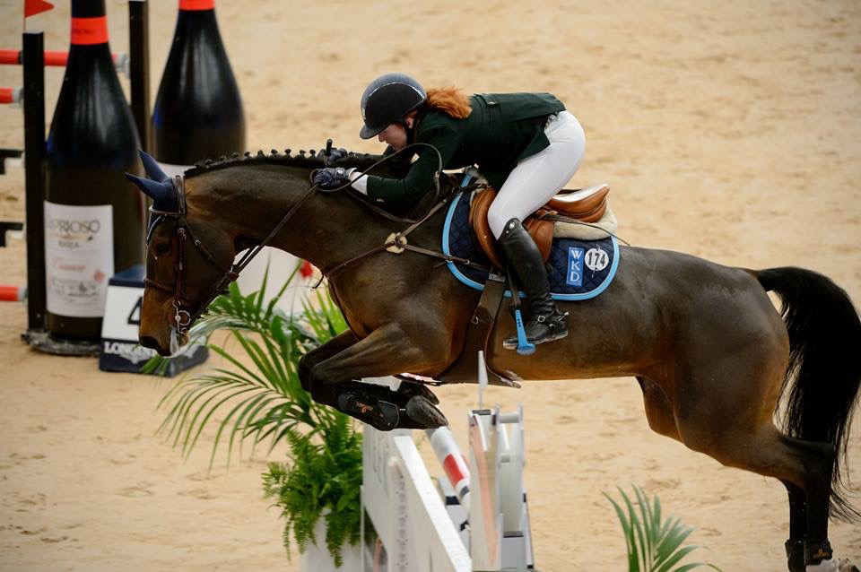 Horse Times Egypt: Equestrian Magazine :Riders Blog :The Perils Of Show Jumping Sport - 19