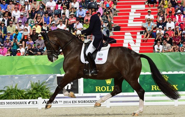 Horse Times Egypt: Equestrian Magazine :Riders Blog :3 OF VALEGRO's FUN FACTS