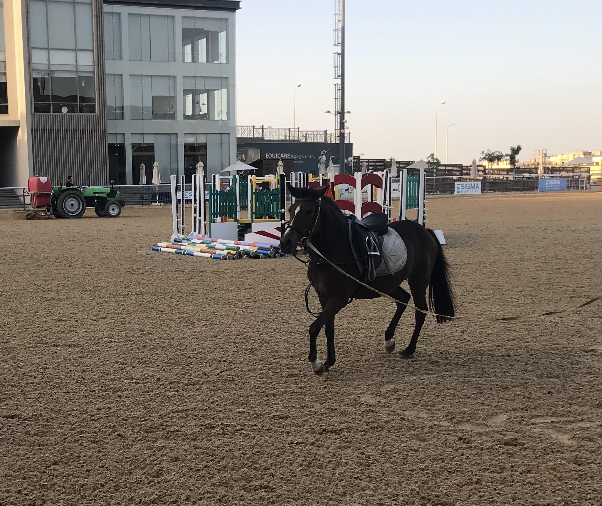 Horse Times Egypt: Equestrian Magazine :Riders Blog :ALL YOU NEED TO KNOW ABOUT EQUICARE'S