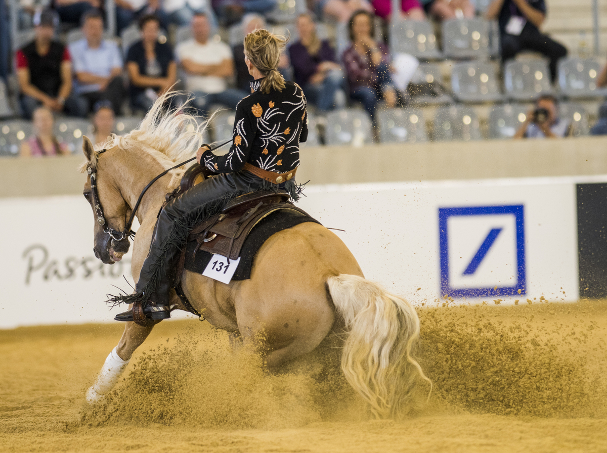 Horse Times Egypt: Equestrian Magazine :Event News :REINING RESULTS - FINAL TEAM STANDINGS AND 1ST QUALIFYING INDIVIDUAL COMPETITION