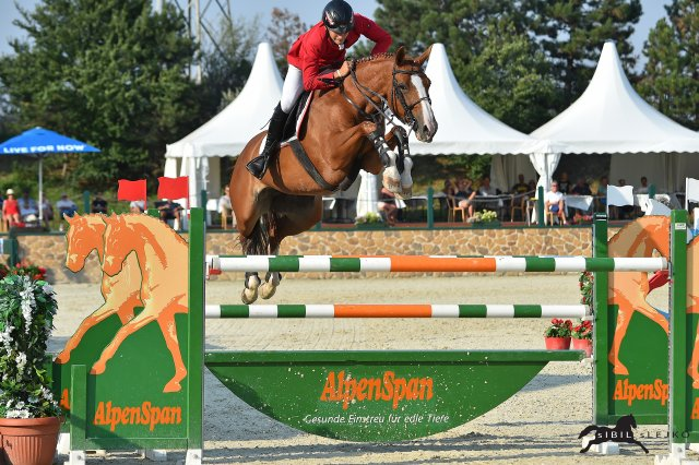 Horse Times Egypt: Equestrian Magazine :Event News :Two chances in junior finals