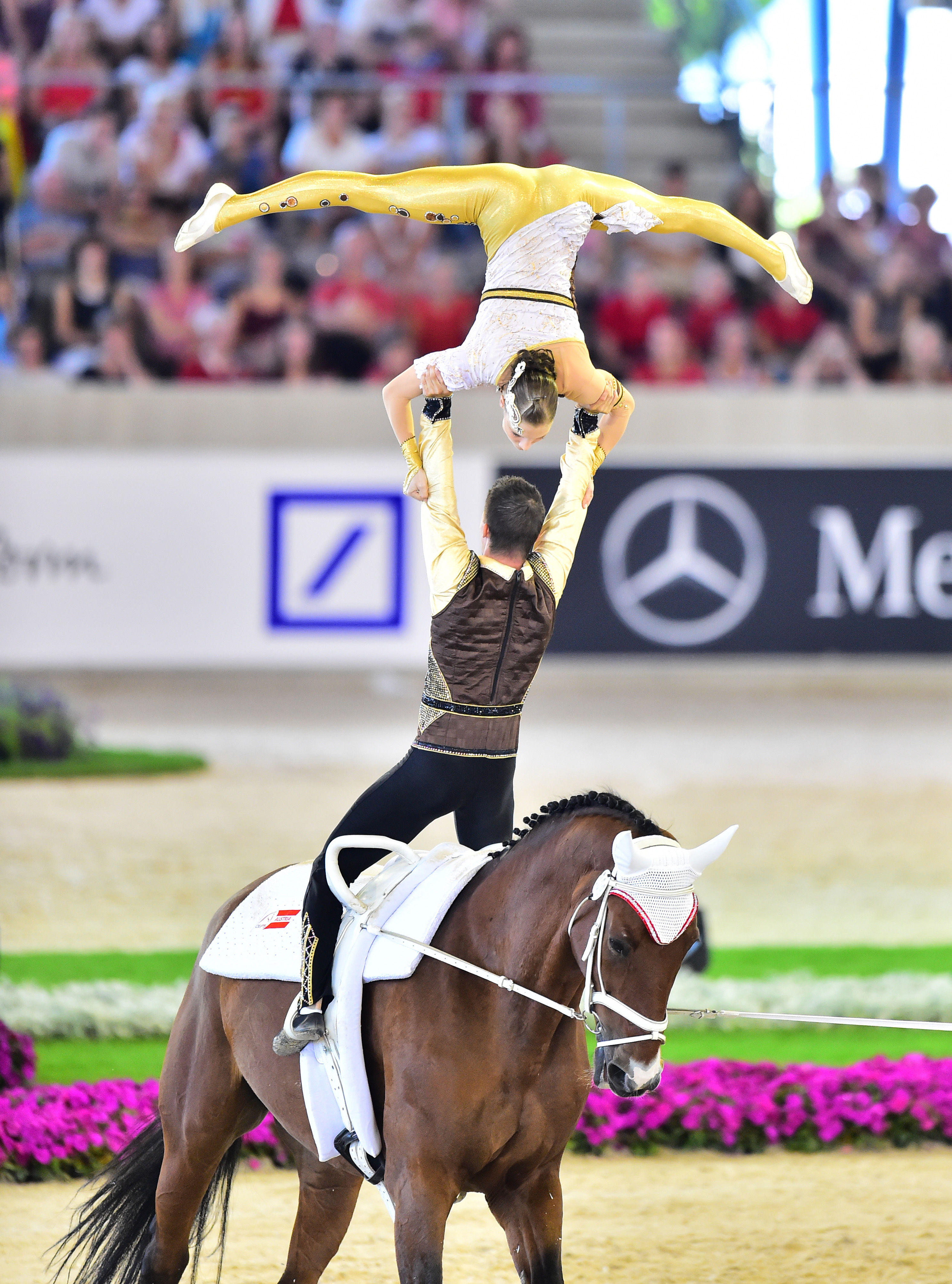 Horse Times Egypt: Equestrian Magazine :Event News :GERMANY AND AUSTRIA CLAIM EUROPEAN CHAMPIONSHIPS VAULTING GOLD