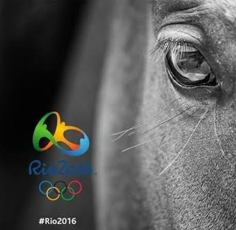 Horse Times Egypt: Equestrian Magazine :Event News :DAILY INTERESTING FACTS ABOUT THE OLYMPICS