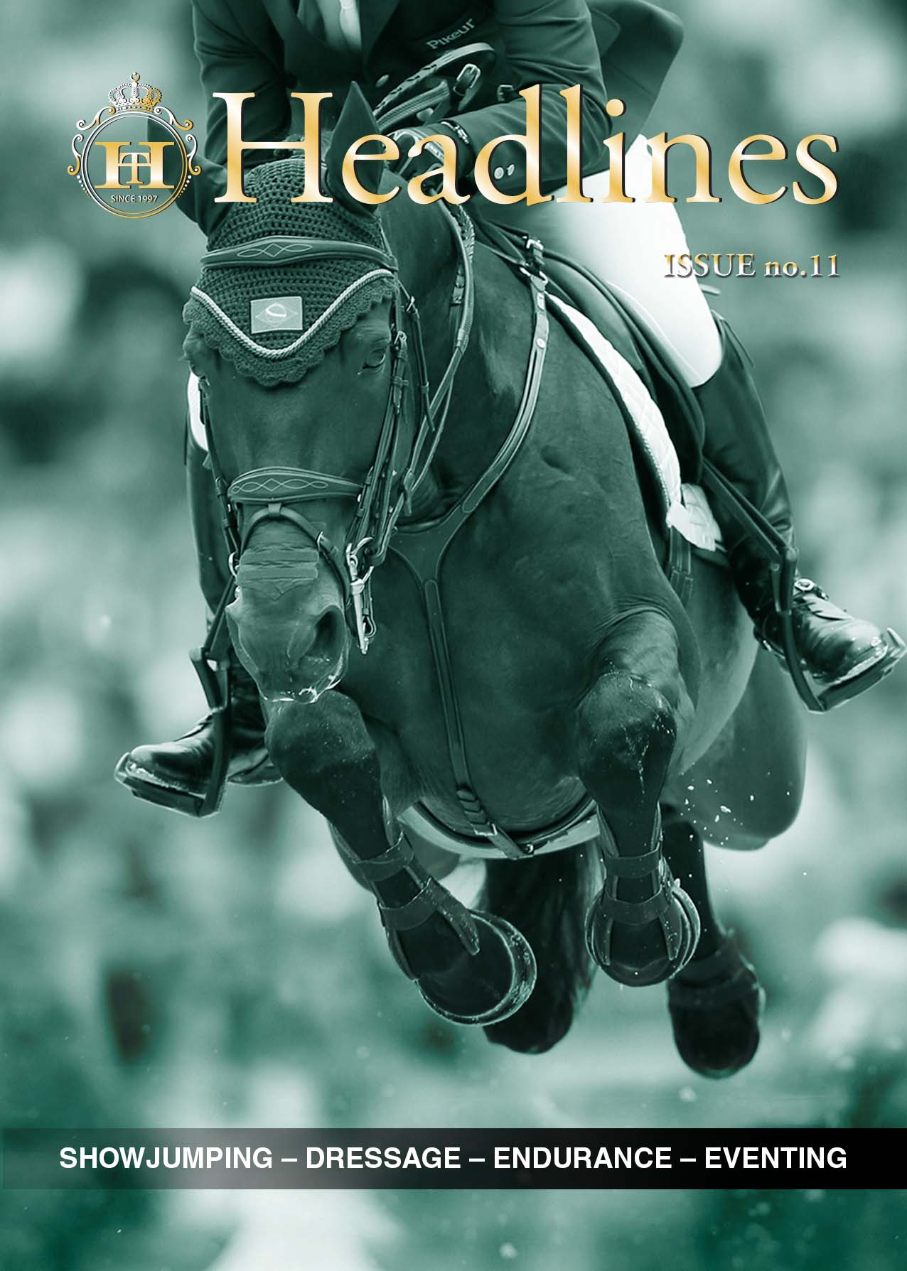 Horse Times Egypt: Equestrian Magazine :headlines :Sunday 15-Nov-2015 Headlines