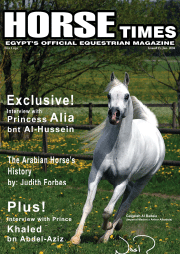 HORSE TIMES :Issue No. 13