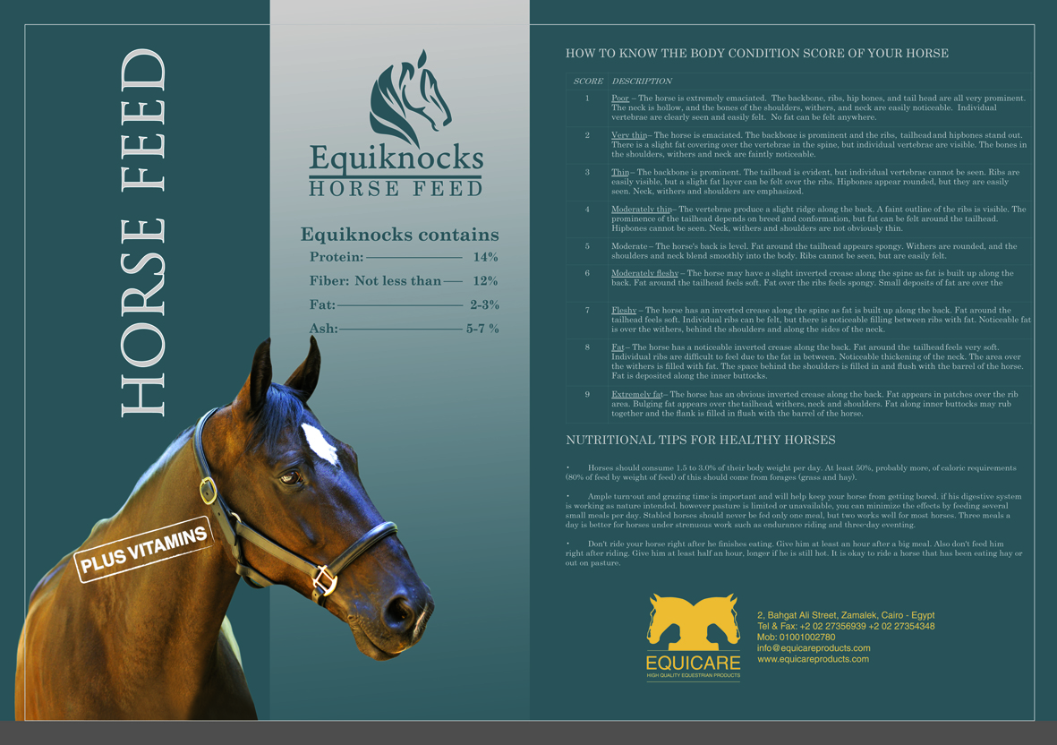 Horse Times Egypt: Equestrian Magazine :News :EQUIKNOCKS HORSE FEED AVAILABLE AT EQUICARE