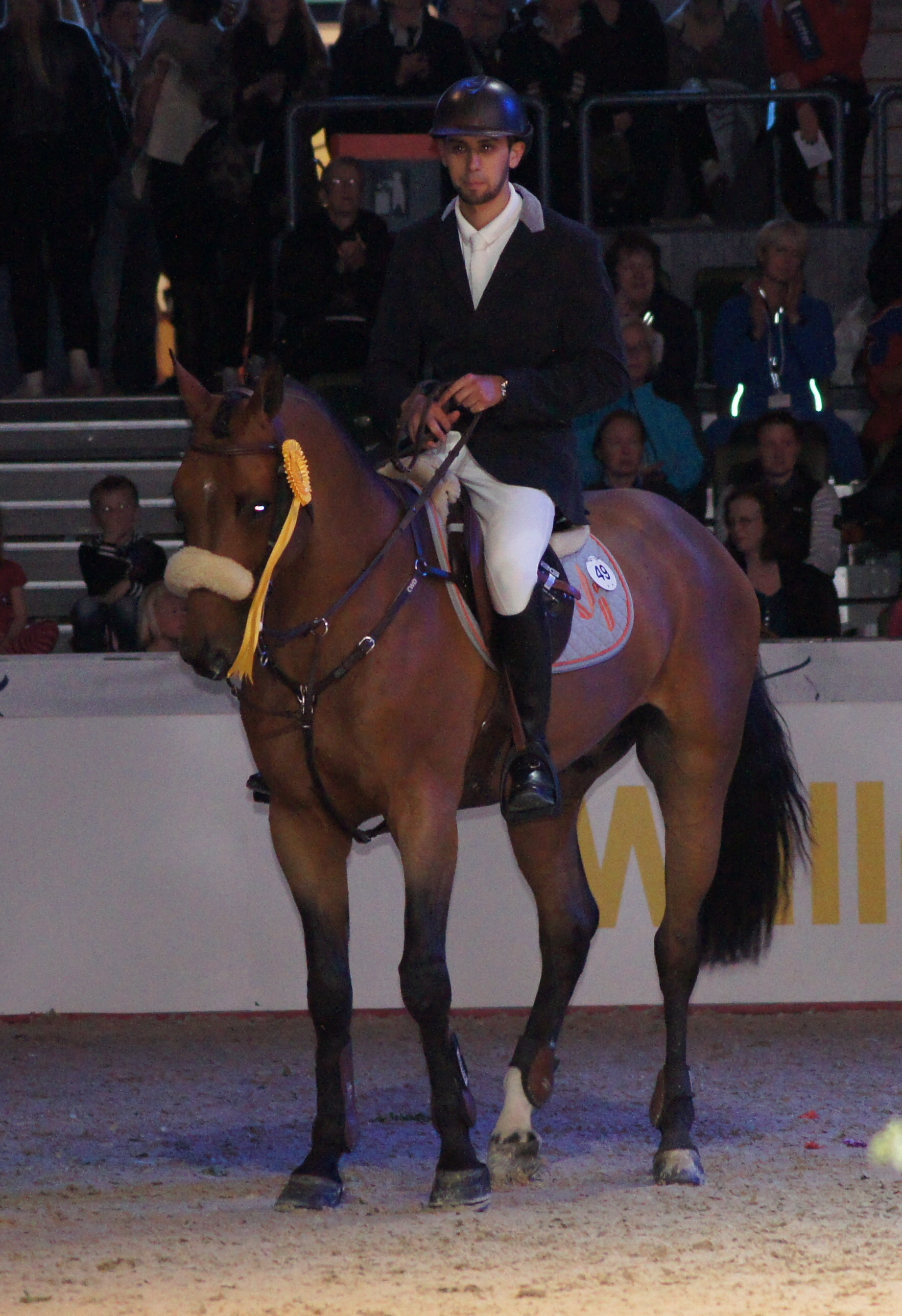 Horse Times Egypt: Equestrian Magazine :News :GOTHENBURG HORSE SHOW 2013 DAY 3