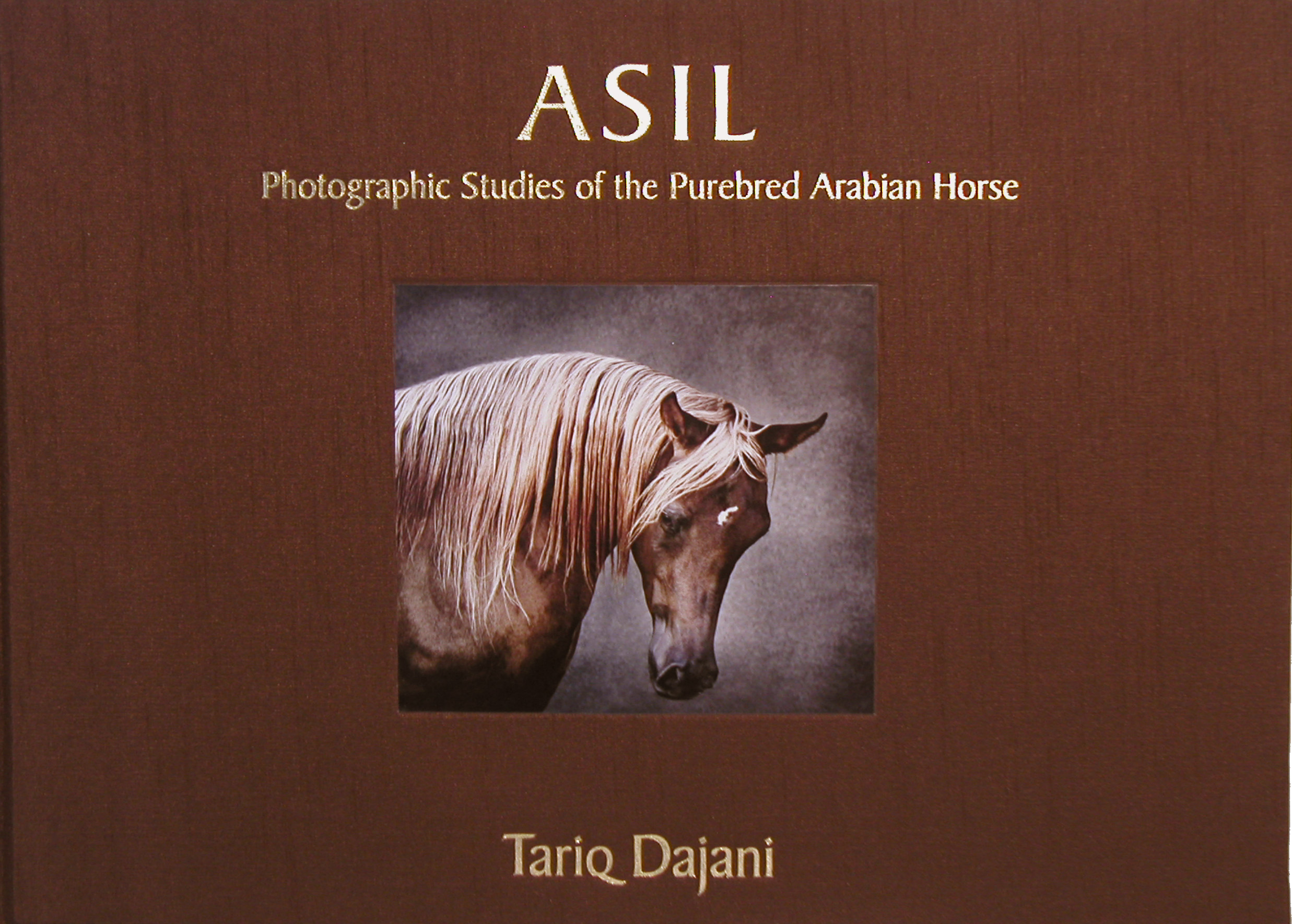 Horse Times Egypt: Equestrian Magazine :News :ASIL: PHOTOGRAPHIC STUDIES OF THE PUREBRED ARABIAN HORSE – IS FINALLY OUT