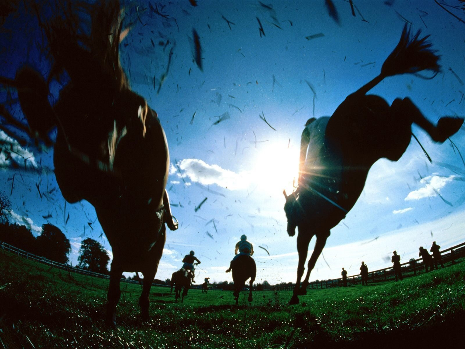Horse Times Egypt: Equestrian Magazine :News :WHAT? WHERE'S ELLERSTINA? - ARGENTINE POLO OPEN 2013 AT PALERMO