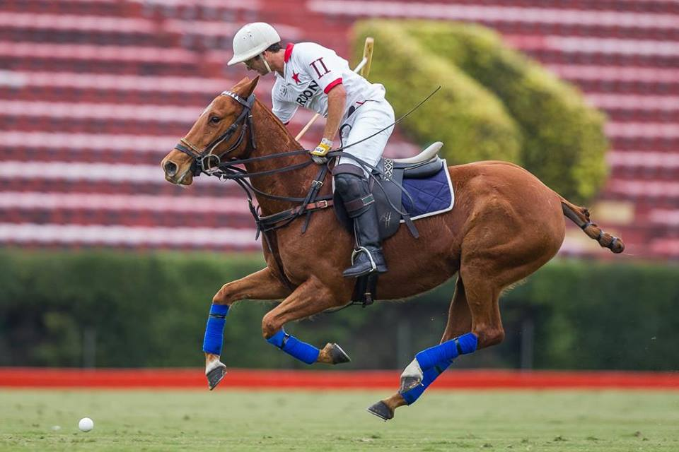 Horse Times Egypt: Equestrian Magazine :News :IF IT AIN'T BROKE, DON'T FIX IT – ARGENTINE POLO ASSOCIATION IS TRYING OUT NEW RULES