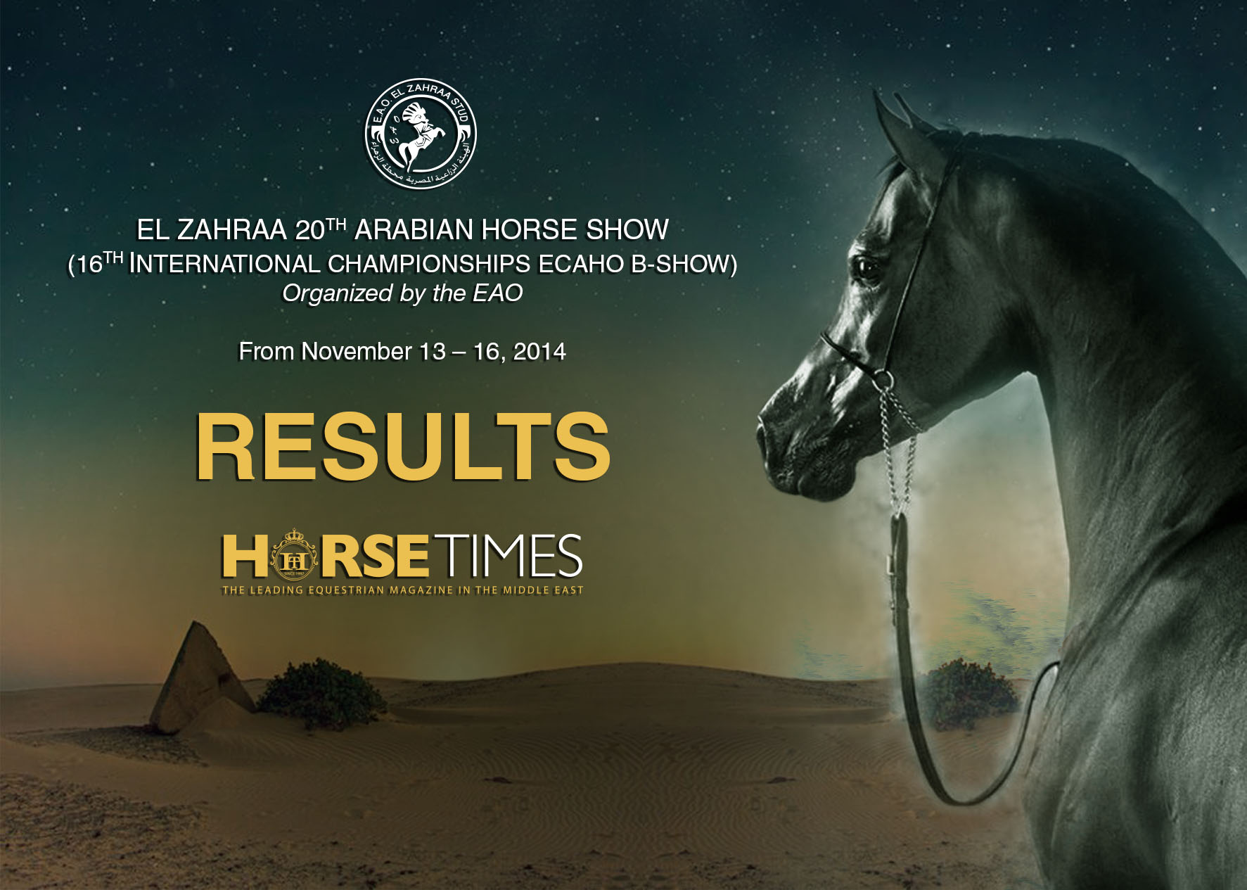Horse Times Egypt: Equestrian Magazine :News :EL ZAHRAA 20TH ARABIAN HORSE CHAMPIONSHIPS - 2014 RESULTS