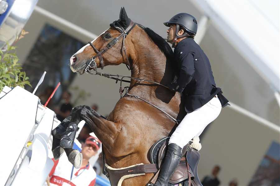 Horse Times Egypt: Equestrian Magazine :News :AN INCREDIBLE DEAD HEAT FOR KARIM EL ZOGHBY AND BEN MAHER IN PARIS