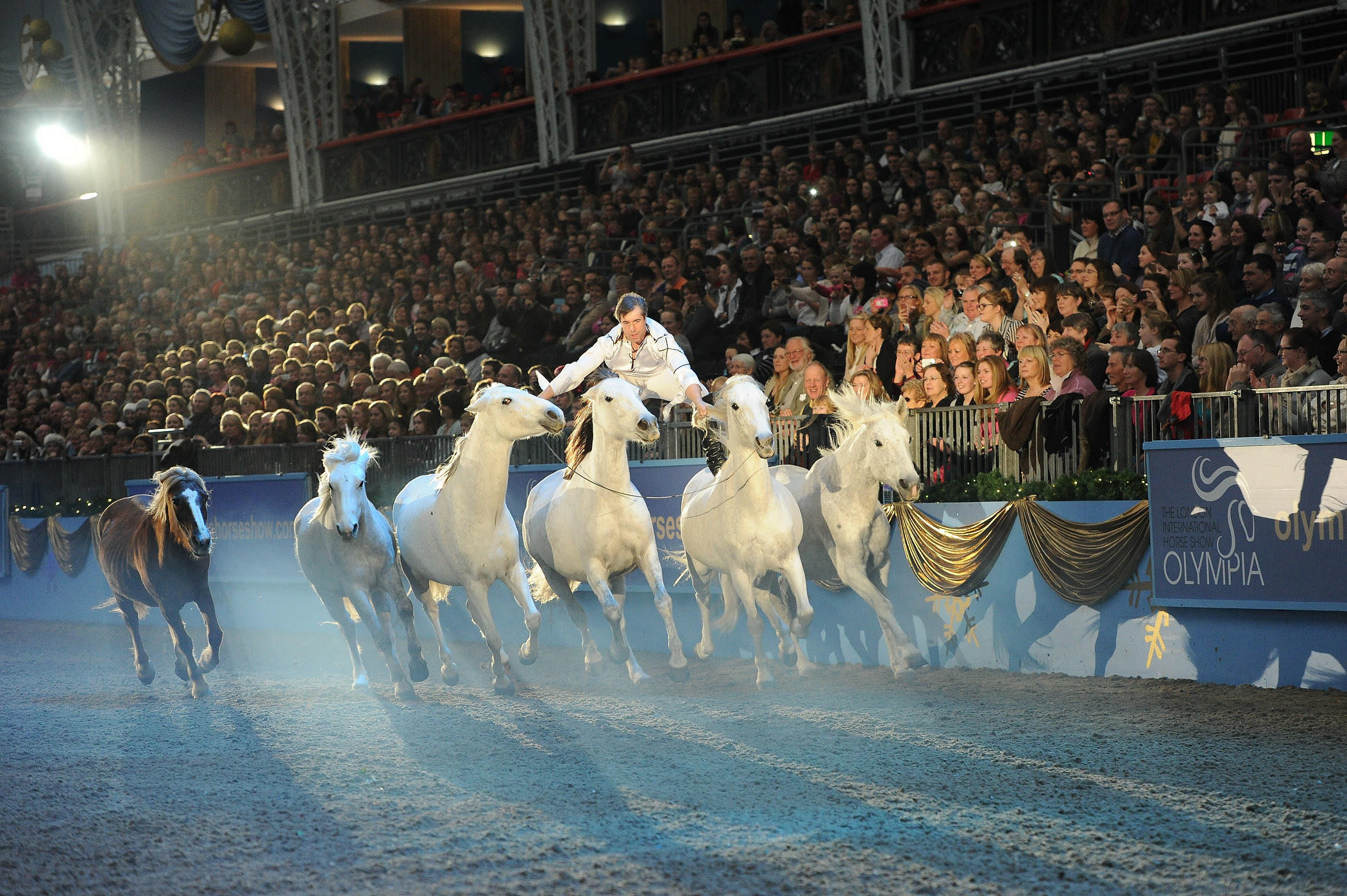 Horse Times Egypt: Equestrian Magazine :News :WORLD FAMOUS HORSE WHISPERER TO HEADLINE OLYMPIA, THE LONDON INTERNATIONAL HORSE SHOW 2015