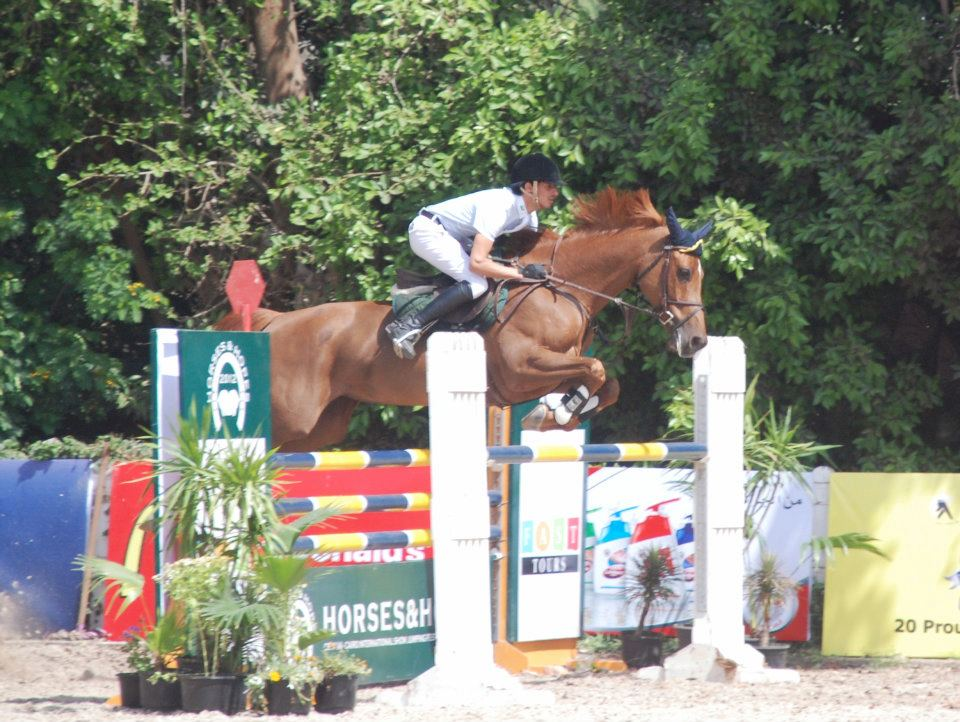 Horse Times Egypt: Equestrian Magazine :News :IMAGES FROM HORSES & HOPES CSI 1* (A)-CAIRO INTERNATIONAL SHOW JUMPING FESTIVAL
