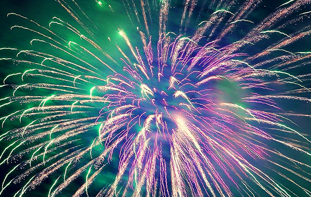 Horse Times Egypt: Equestrian Magazine :News :Horse owners call for a restriction on fireworks