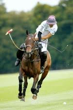 Horse Times Egypt: Equestrian Magazine :News :POLO CLUB DU DOMAINE DE CHANTILLY