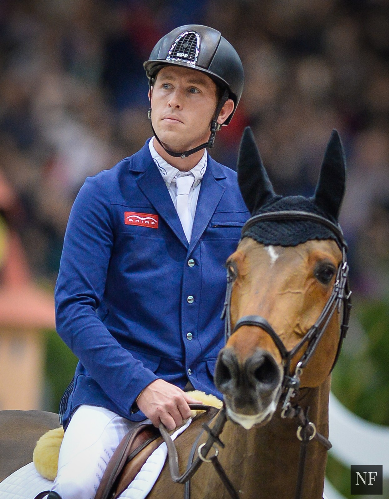 Horse Times Egypt: Equestrian Magazine :News :NO RIO OLYMPICS FOR THE HONORED SCOTT BRASH