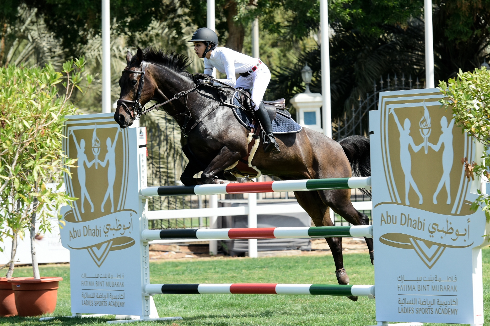 Horse Times Egypt: Equestrian Magazine :News :TROT DOWN TO THE BRAND NEW EQUESTRIAN VILLAGE AT FBMA'S INTERNATIONAL SHOW JUMPING CUP 2017 FOR A FUN FAMILY WEEKEND