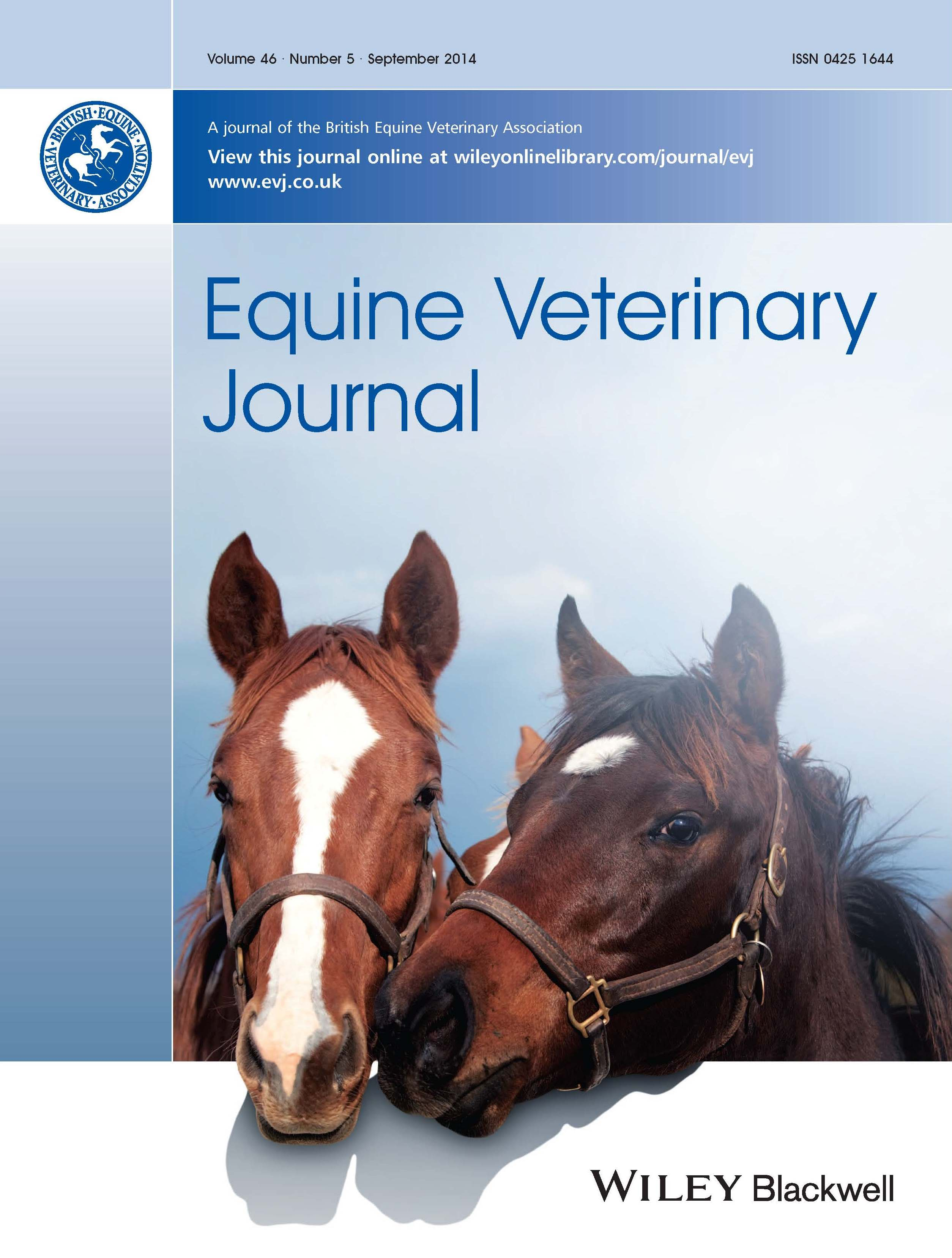 Horse Times Egypt: Equestrian Magazine :News :ANTI-INFLAMMATORIES IN EHV-1 INFECTION