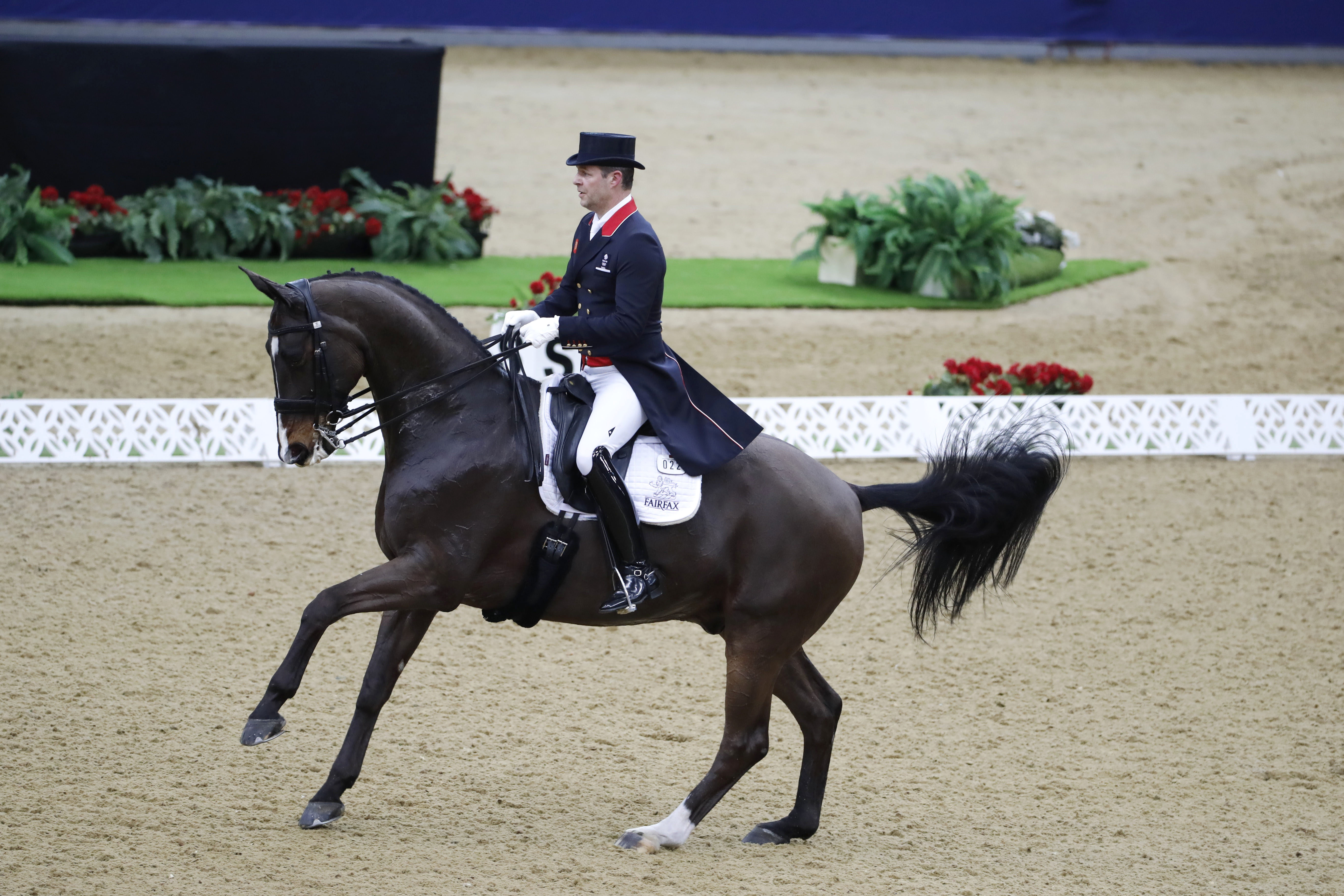 Horse Times Egypt: Equestrian Magazine :News :DRESSAGE GRAND PRIX HIGHLIGHTS SECOND DAY OF CHI AL SHAQAB