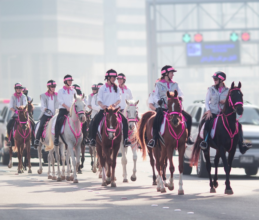 Horse Times Egypt: Equestrian Magazine :News :PINK CARAVAN RIDERS AND VOLUNTEERS WORK OVER 200,000 HOURS FOR BREAST CANCER AWARENESS