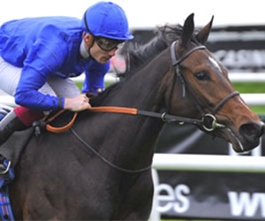 Horse Times Egypt: Equestrian Magazine :News :THUNDER SNOW & BEAUTIFUL ROMANCE HEAD GODOLPHIN G2 CONTENDERS FOR DUBAI WORLD CUP NIGHT