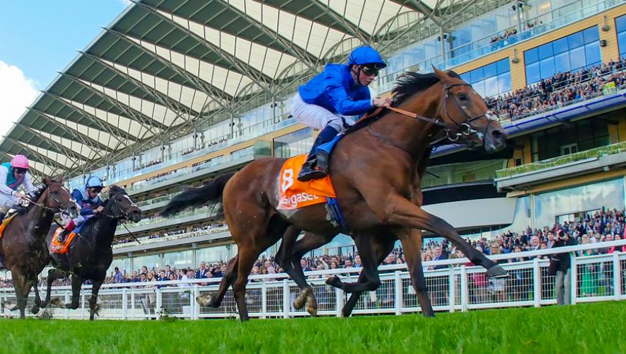 Horse Times Egypt: Equestrian Magazine :News :RIBCHESTER, JACK HOBBS & MOVE UP LEAD POWERFUL DUBAI WORLD CUP NIGHT SQUAD