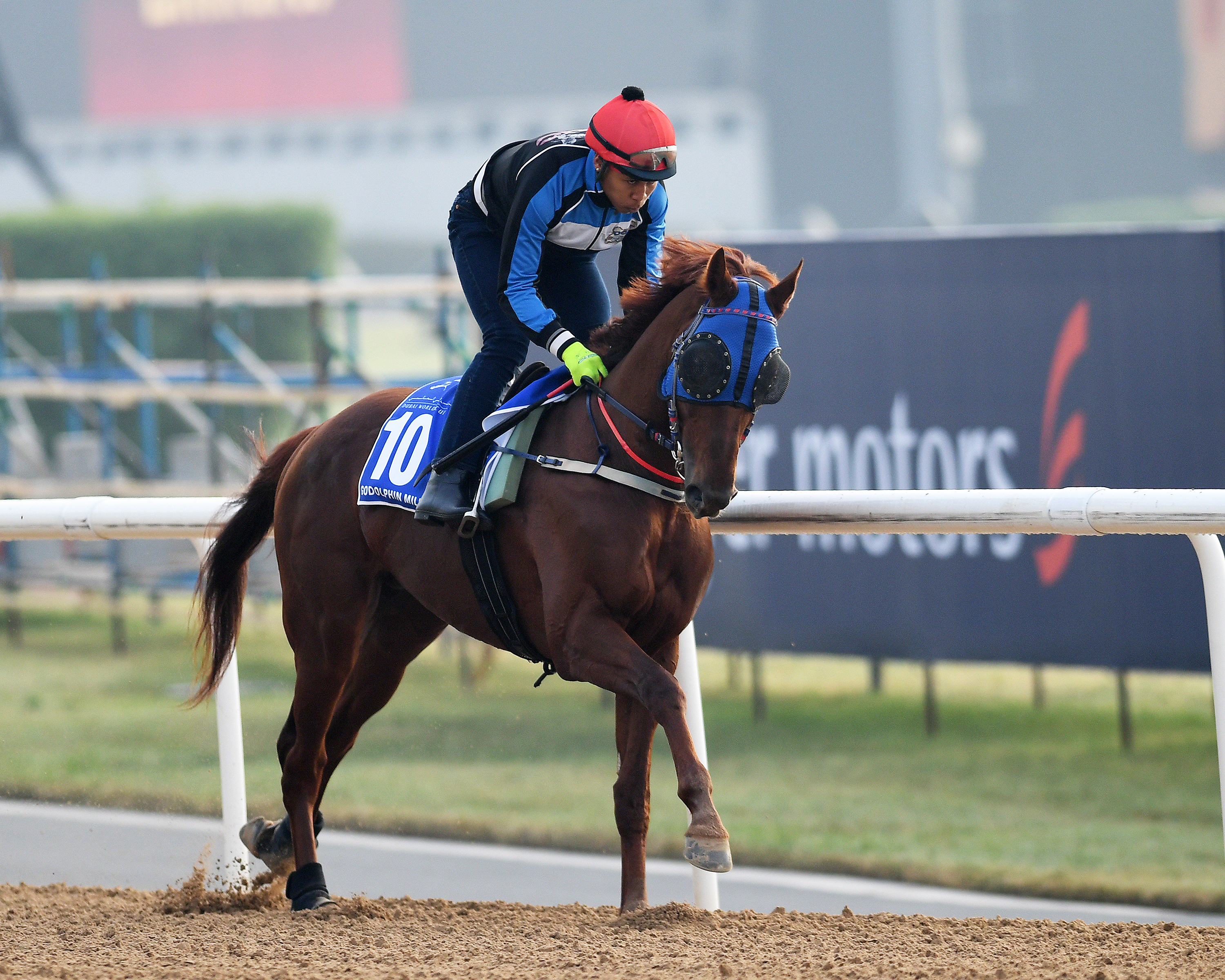 Horse Times Egypt: Equestrian Magazine :News :DUBAI WORLD CUP 2017 : KOREA GOING THE WHOLE NINE YARDS