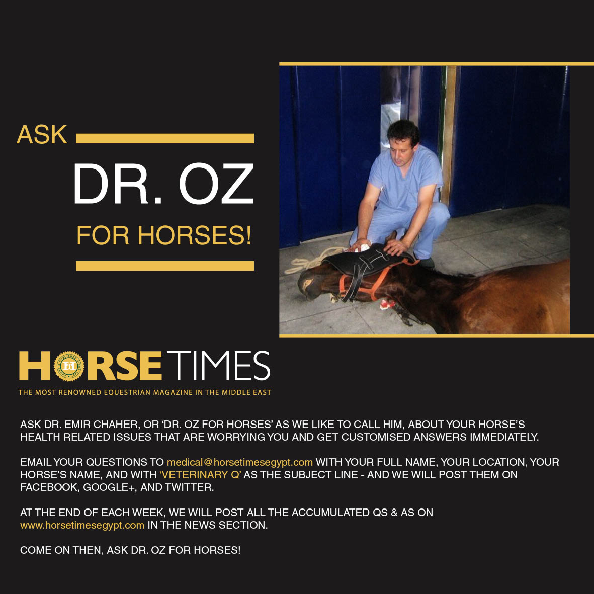 Horse Times Egypt: Equestrian Magazine :News :ASK DR. OZ FOR HORSES!