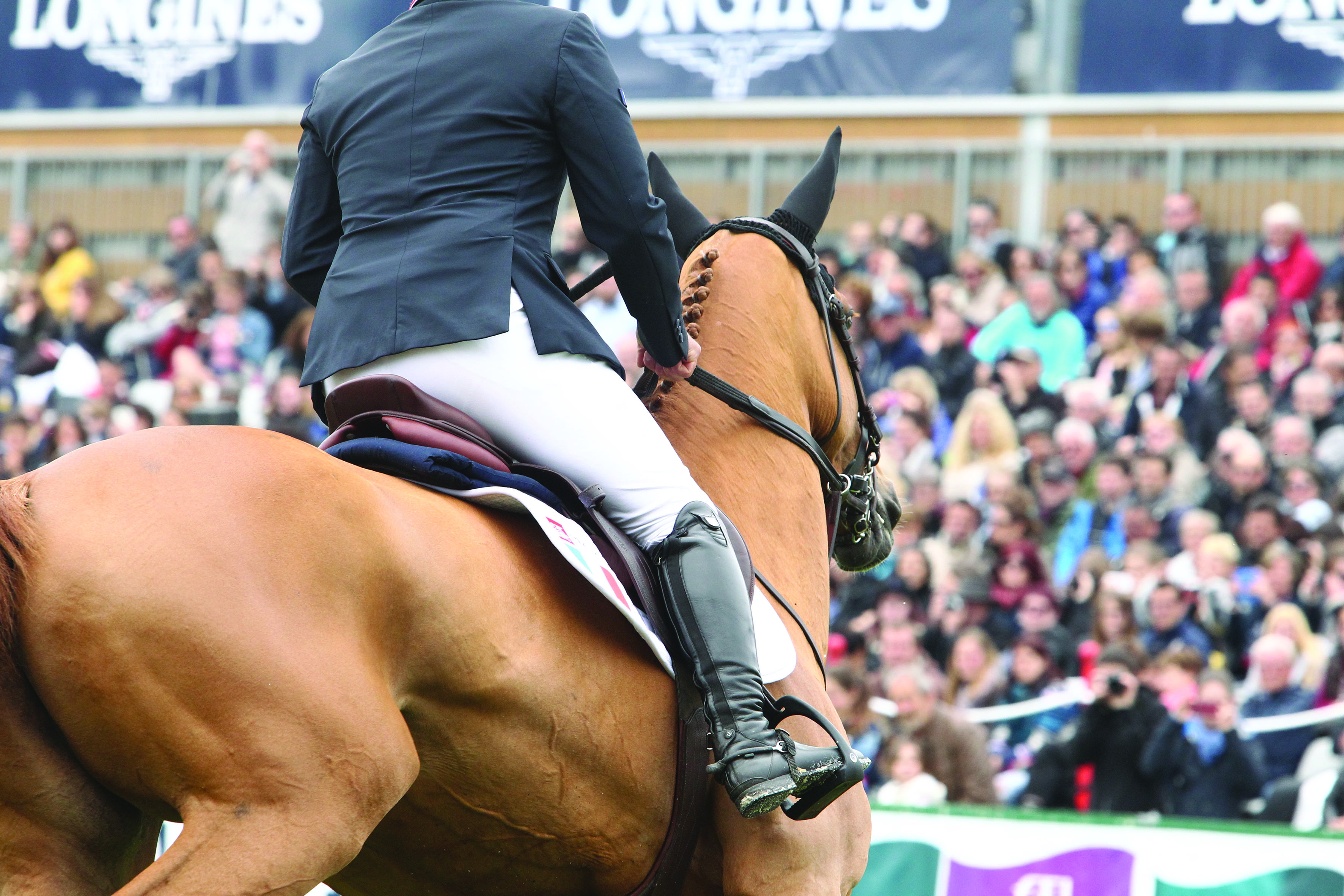 Horse Times Egypt: Equestrian Magazine :News :LONGINES JUMPING INTERNATIONAL OF LA BAULE: INSIGHTS