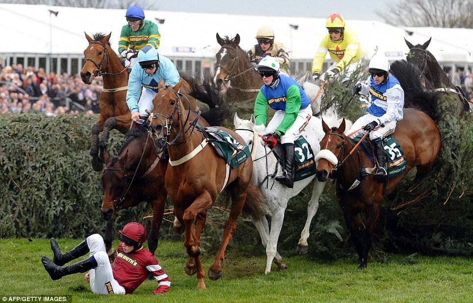 Horse Times Egypt: Equestrian Magazine :News :RISK IN NATIONAL HUNT FLAT RACES
