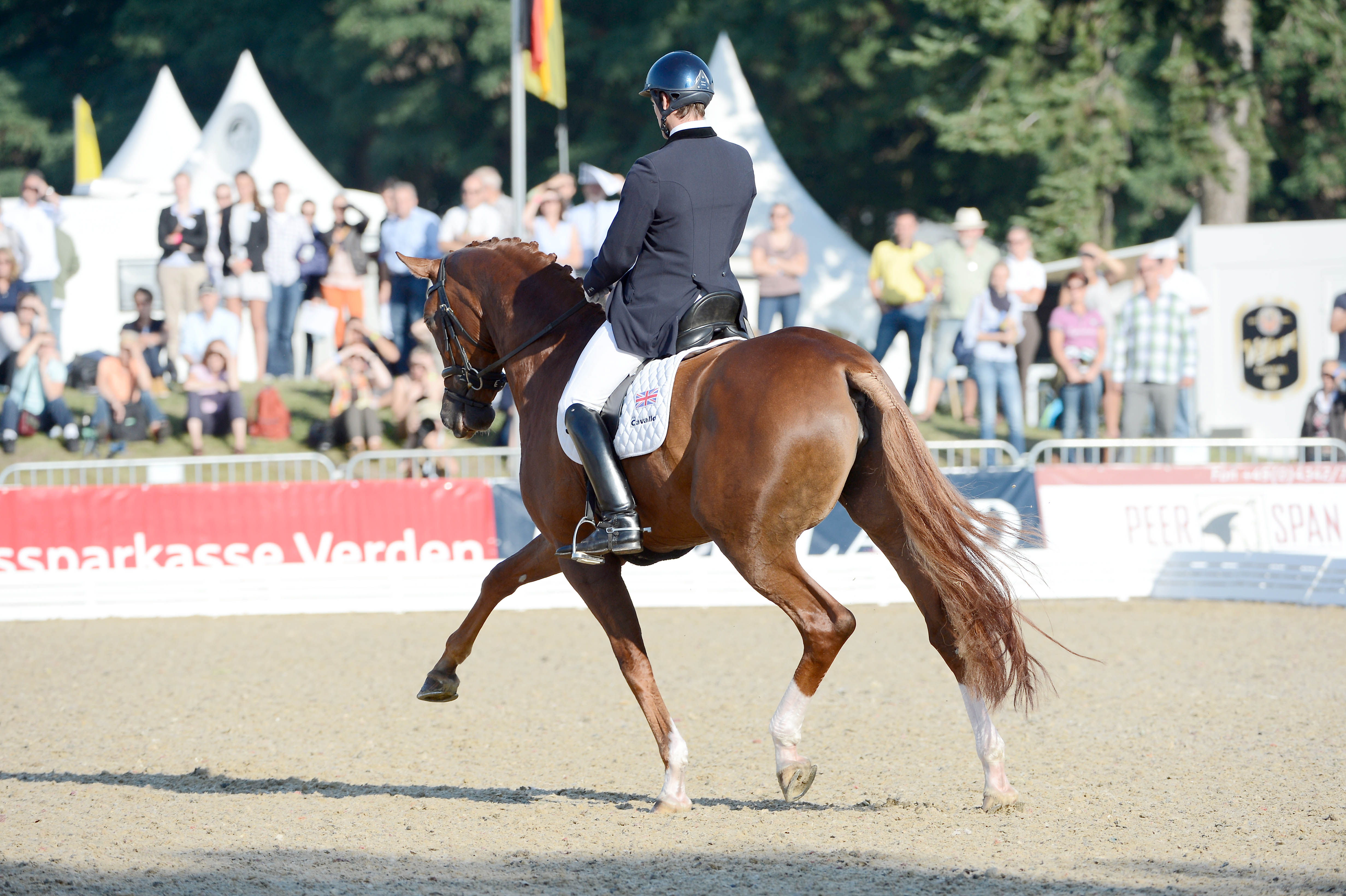 Horse Times Egypt: Equestrian Magazine :News :INTERNATIONAL DRESSAGE AND SHOW JUMPING FESTIVAL VERDEN AND WORLD BREEDING DRESSAGE CHAMPIONSHIPS FOR YOUNG HORSES